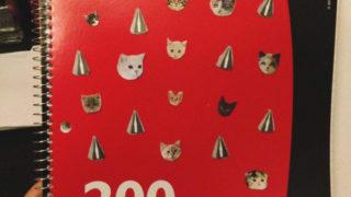 Cat notebook DIY