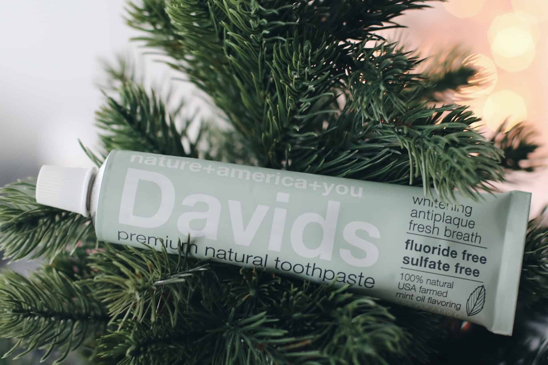 Best holiday gift ideas for clean beauty lovers | Christmas gift guide for makeup and skincare lovers | top green beauty products | Diary of a Toronto Girl, a Canadian lifestyle blog