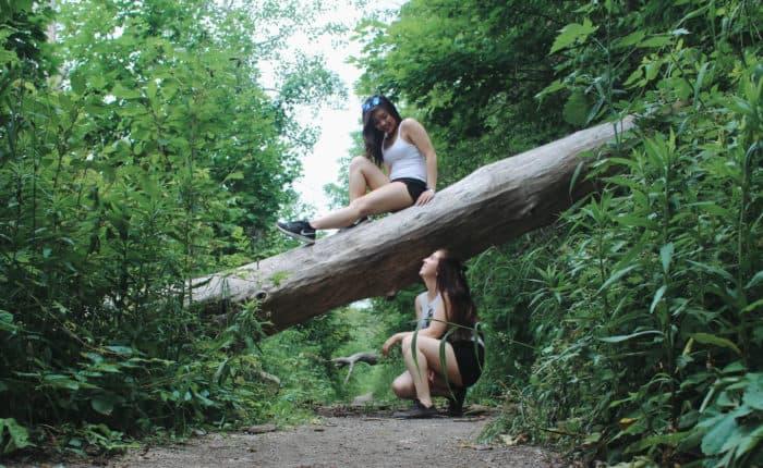 Tews Falls Lookout Trail, Hamilton
