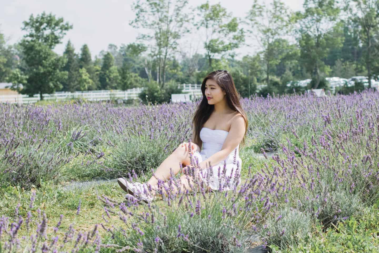 A Day at Terre Bleu Lavender Farm