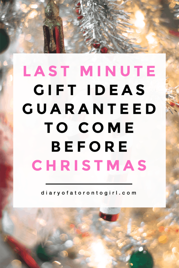 Christmas last minute holiday gift guide 2017 | last minute gifts