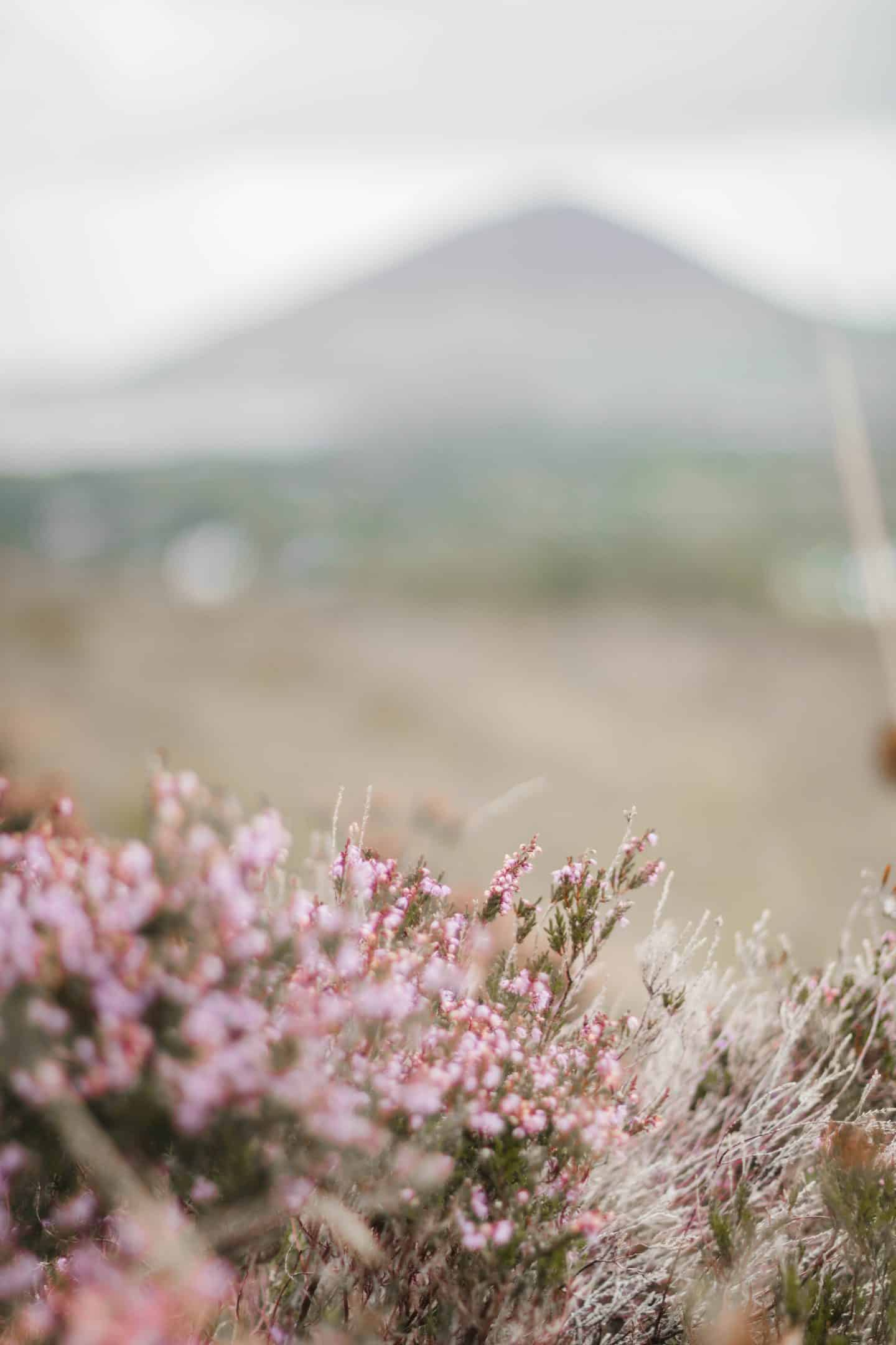 Hiking the Diamond Hill walks in Connemara National Park, Ireland