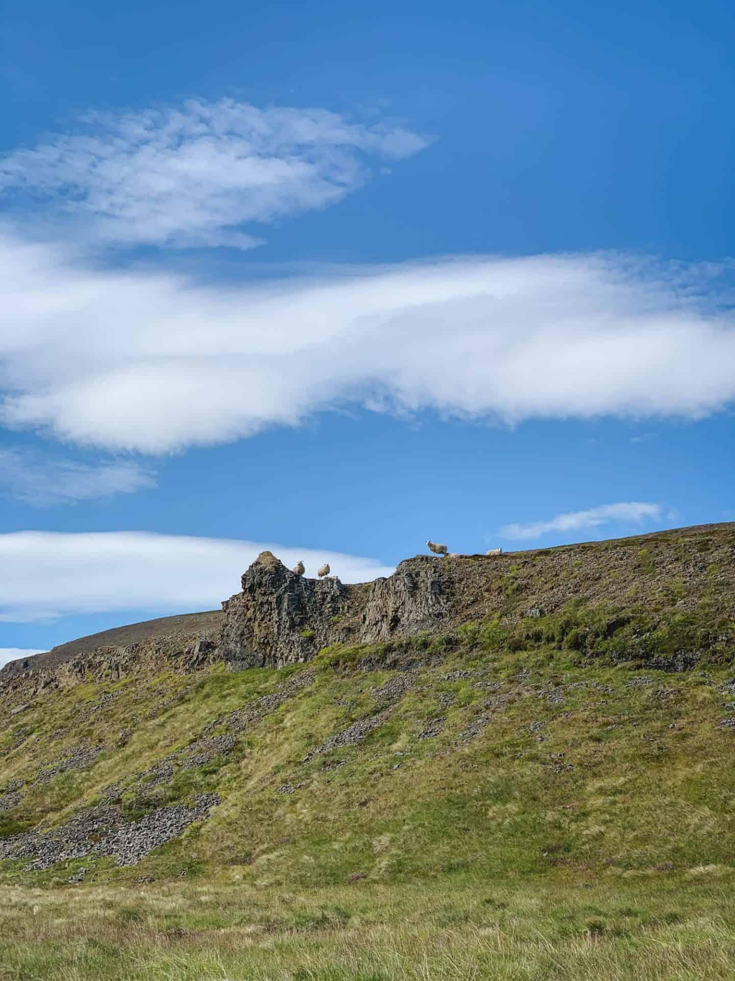 The epic Westfjords of Iceland