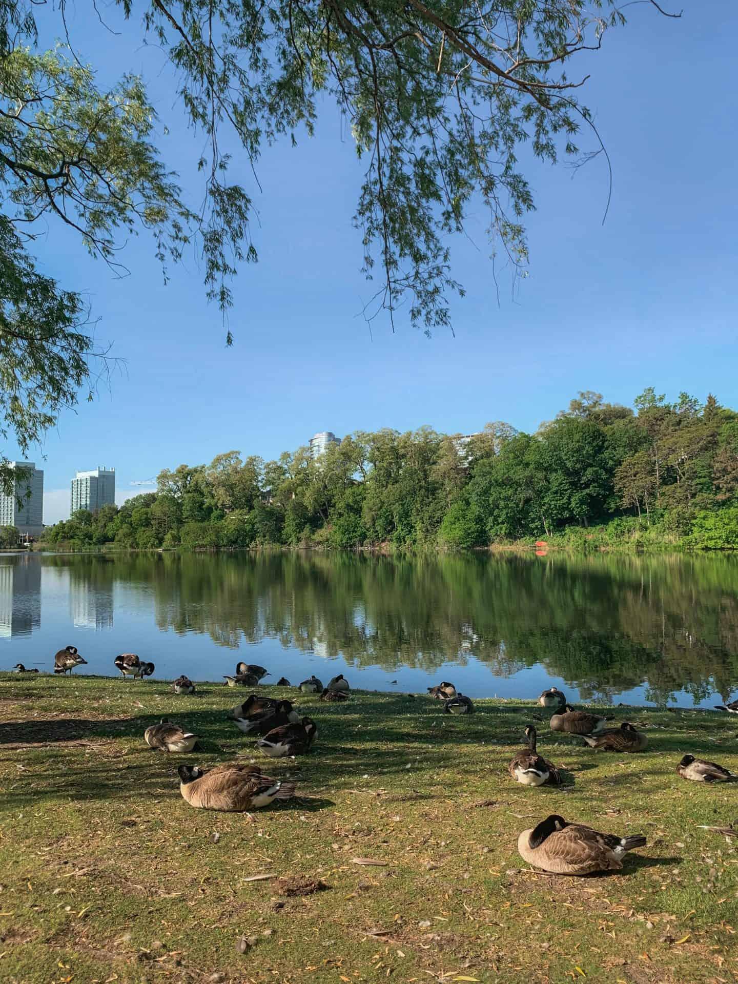 High Park in Toronto, Ontario