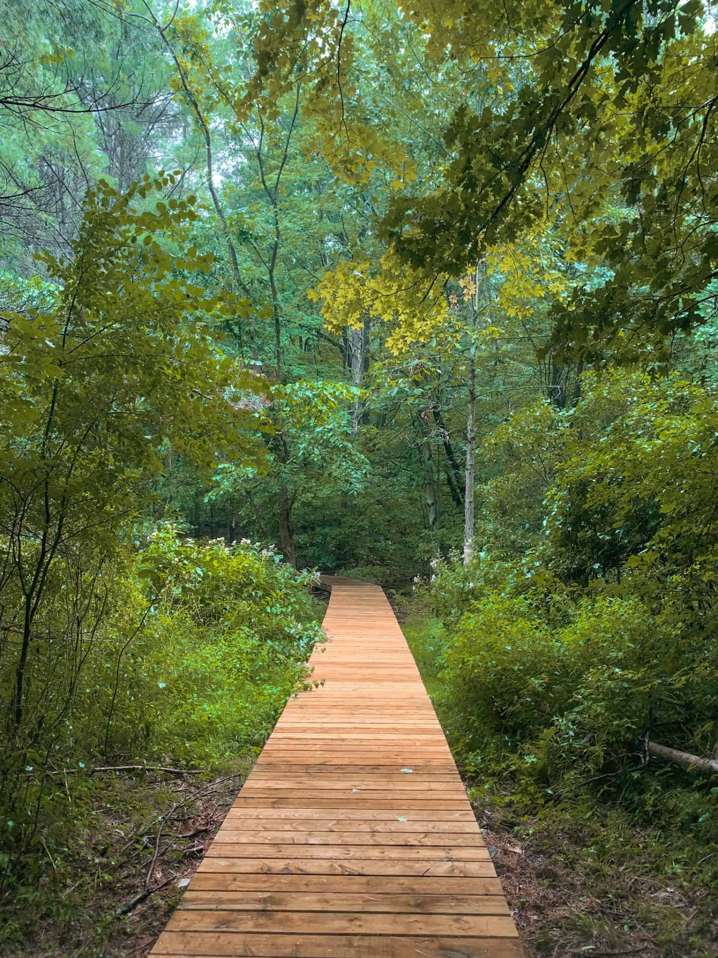 Jones Creek Trails in Gananoque, Ontario