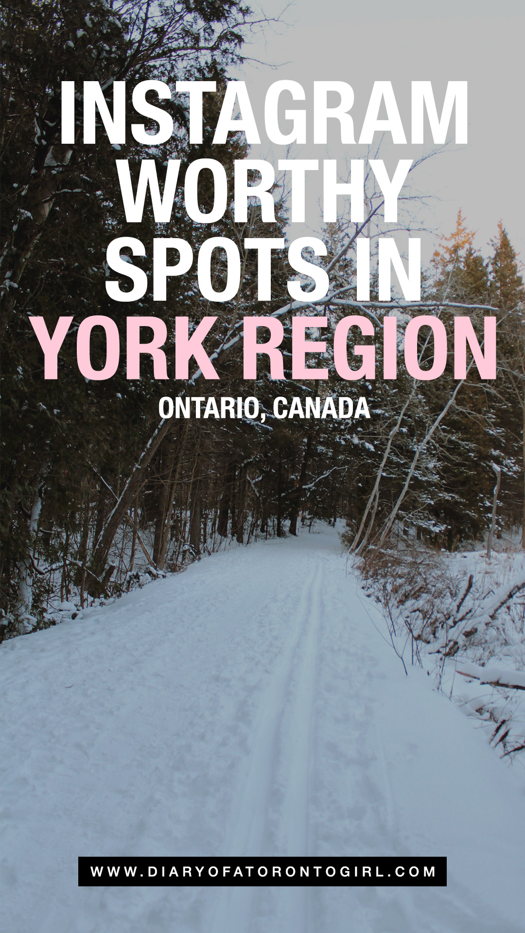 The most Instagram-worthy spots in York Region, Ontario to visit, including Newmarket, Richmond Hill, Markham, Thornhill, and Vaughan!