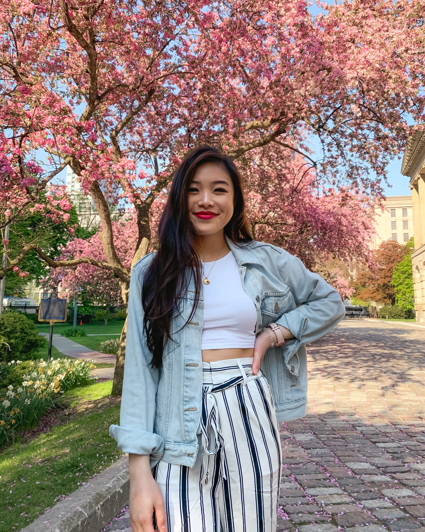 Spring flowers at Osgoode Hall in downtown Toronto | Levi's denim trucker jacket, American Apparel white high neck crop top, BB Dakota striped pants from Amazon Fashion
