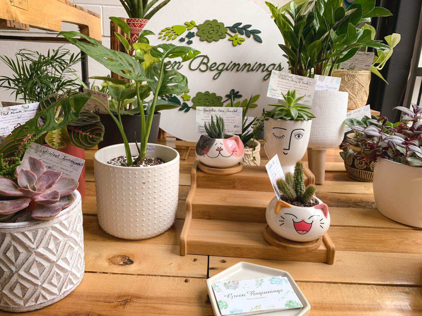 Green Beginnings at Markets by Dream Day in Bowmanville, Ontario