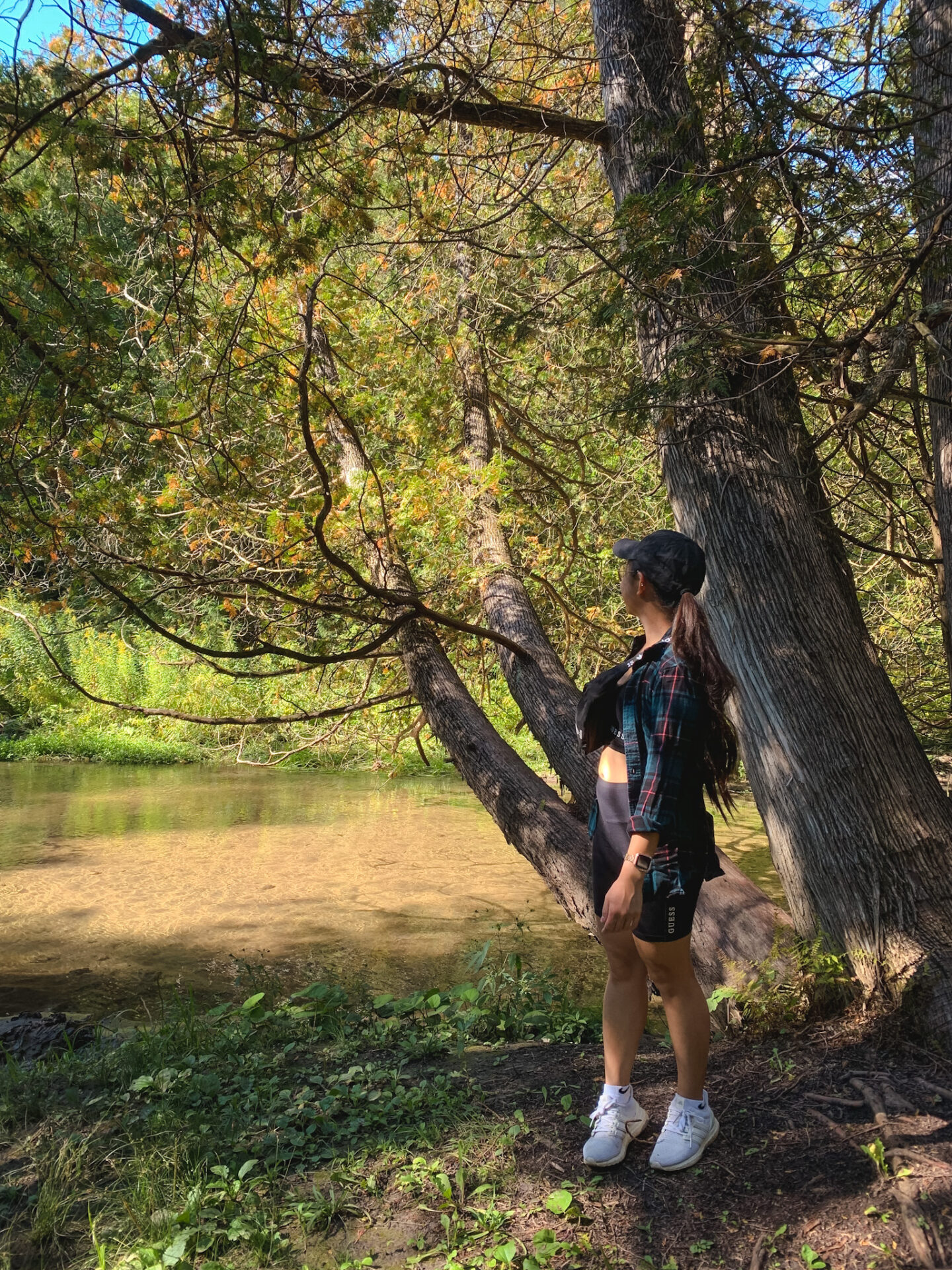 Orono Crown Lands hike in Bowmanville, Durham Region