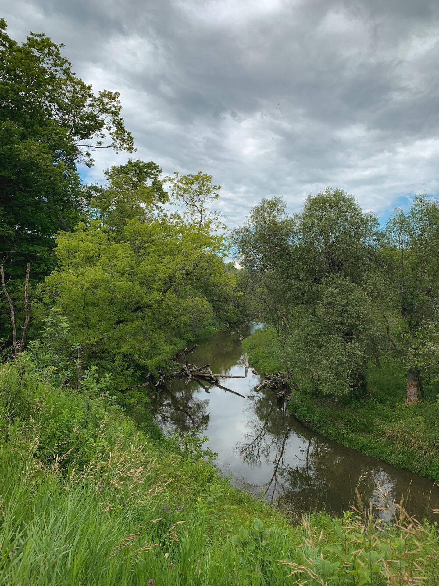 Samuel Wilmot Nature Area in Newcastle, Ontario