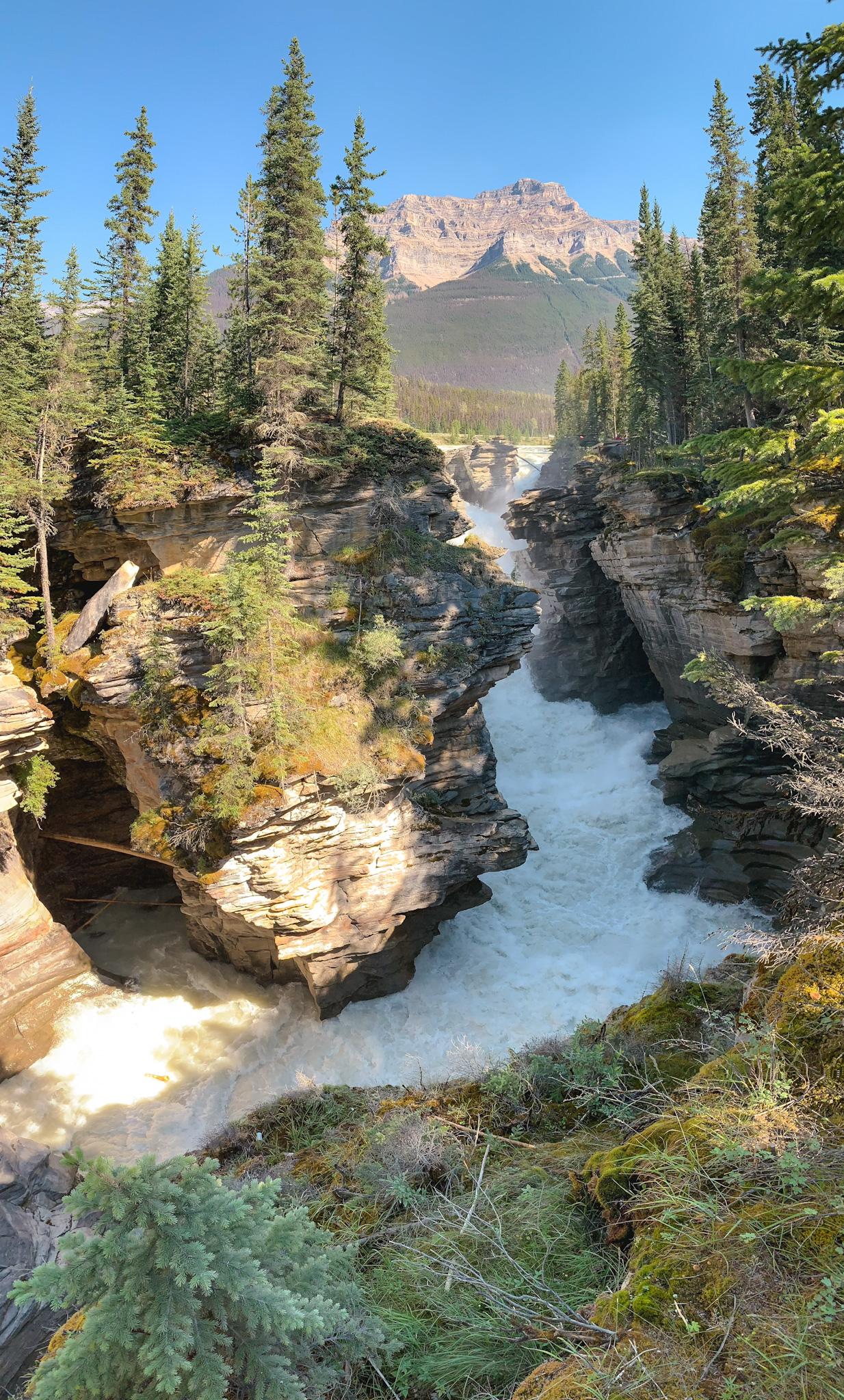 Athabasca Falls in Jasper National Park, Alberta