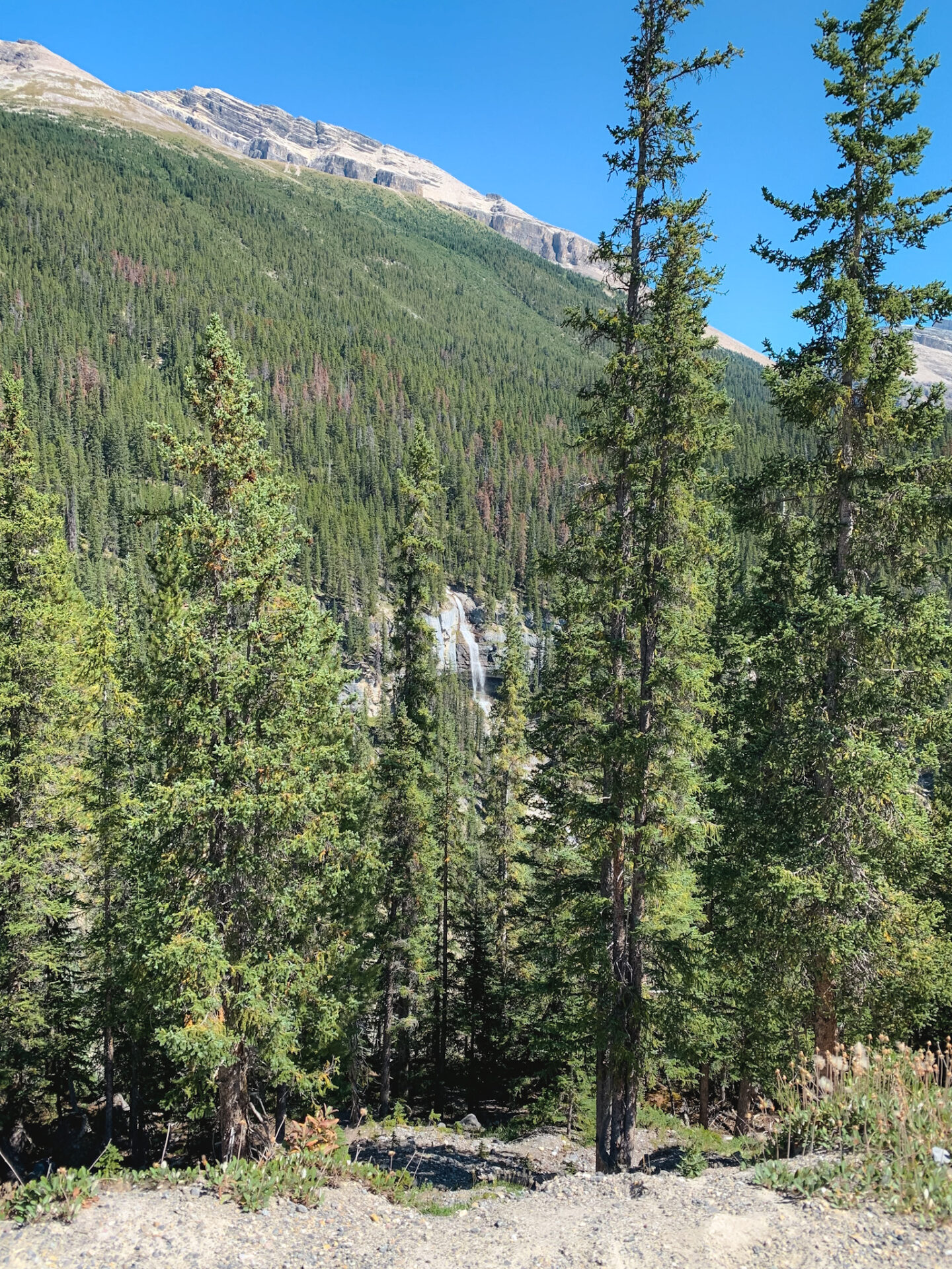 Bridal Veil Falls in Banff, Alberta